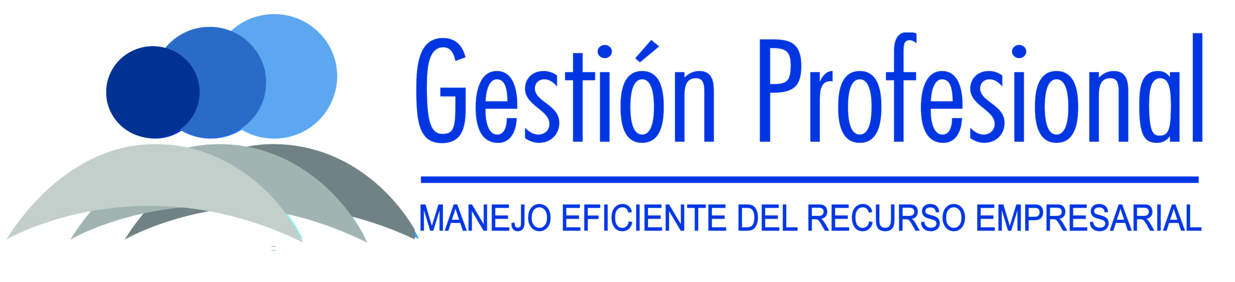 Gestion Profesional